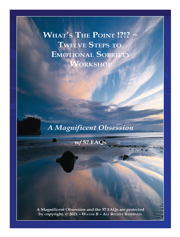 A Magnificent Obsession w 57 FAQs-1